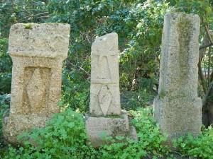 2015 チュニス カルタゴ遺跡